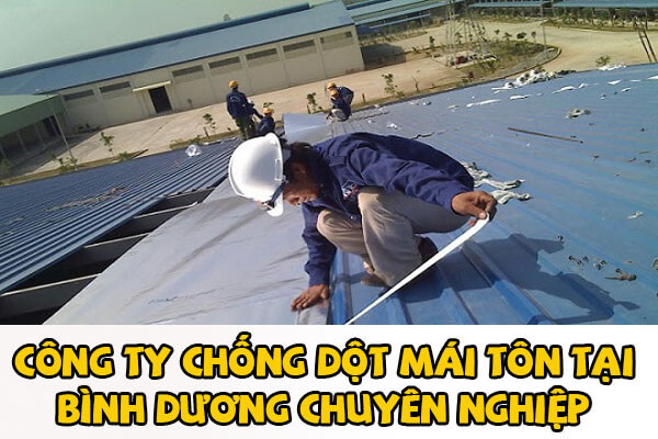 Công ty chống dột mái tôn tại Bình Dương